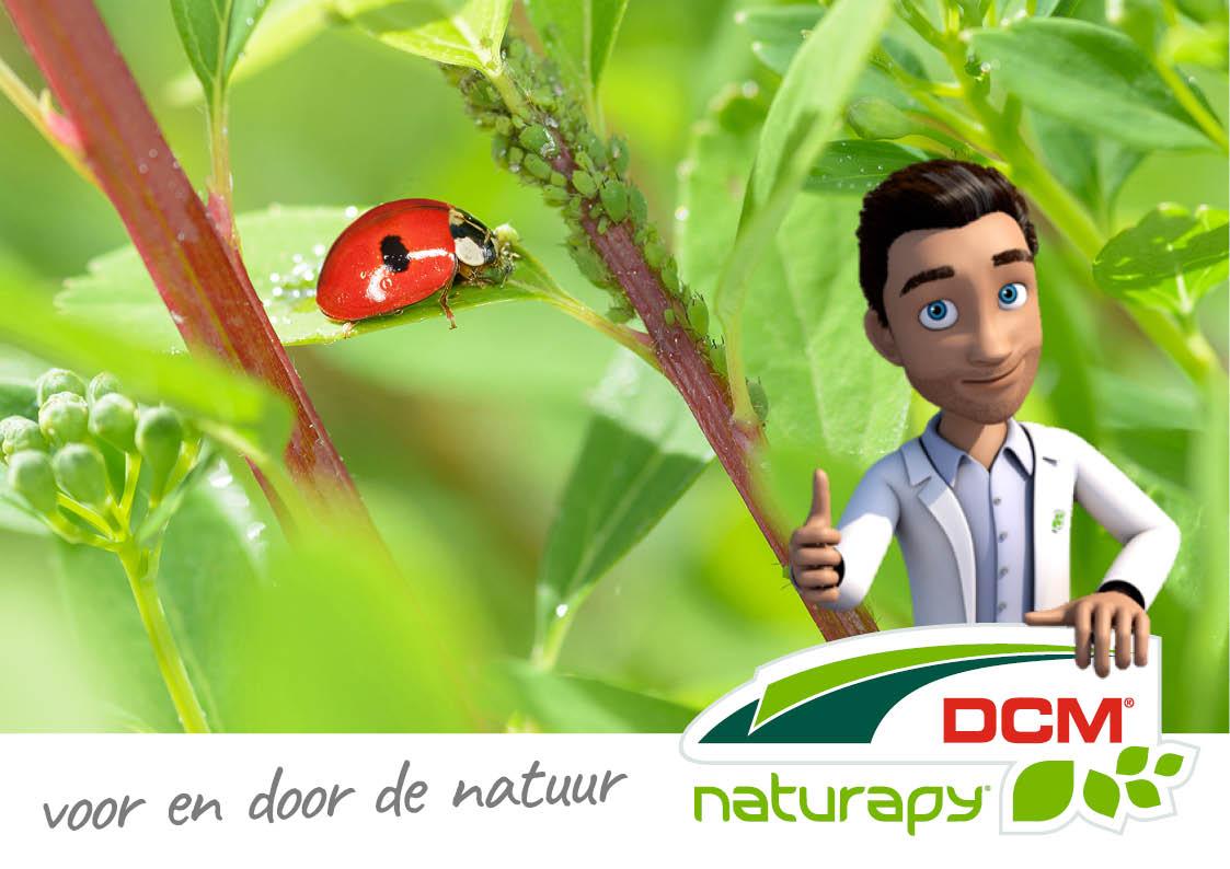 Naturapy; natuurlijke vijanden tegen insecten.